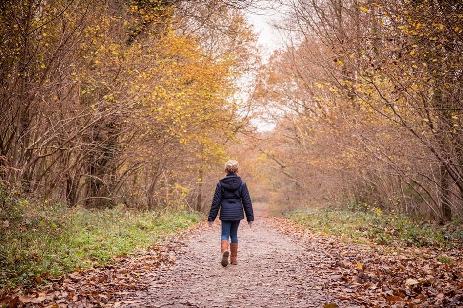 Autumnal Walk, Southampton